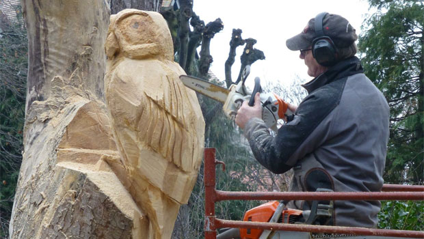 Chain saw sculpting
