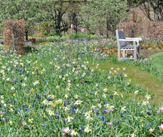Discover the gardens at Warren House in National Gardening Week 2017