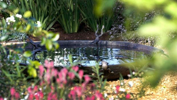 Garden for dementia