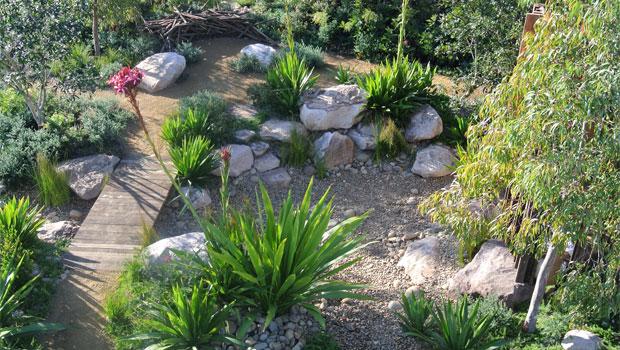 Australian Native Plant Lovers Garden